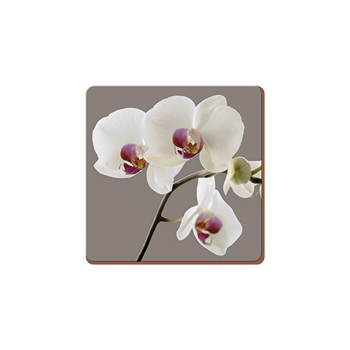 5176456-Creative-Tops-Orchid-Harmony-Set-Of-4-Large-Premium-Coasters-1